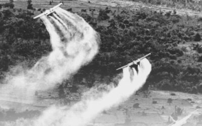 Vietnamese Reparations 'Tour': Sadness, Anger and Partial Redemption